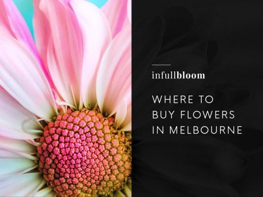 Where to Buy Flowers in Melbourne