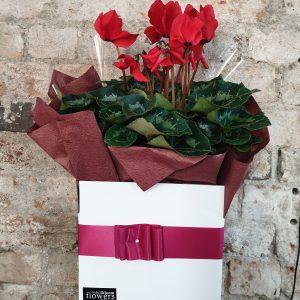 florists open on Sunday near me