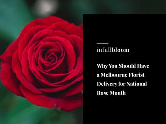 Why You Should Have a Melbourne Florist Delivery for National Rose Month