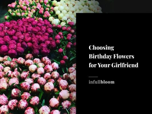 Choosing Birthday Flowers for Your Girlfriend