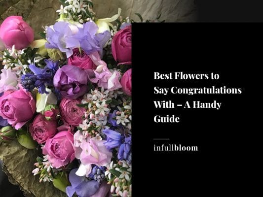 Best Flowers to Say Congratulations With – A Handy Guide