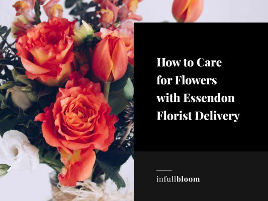How to Care for Flowers with Essendon Florist Delivery